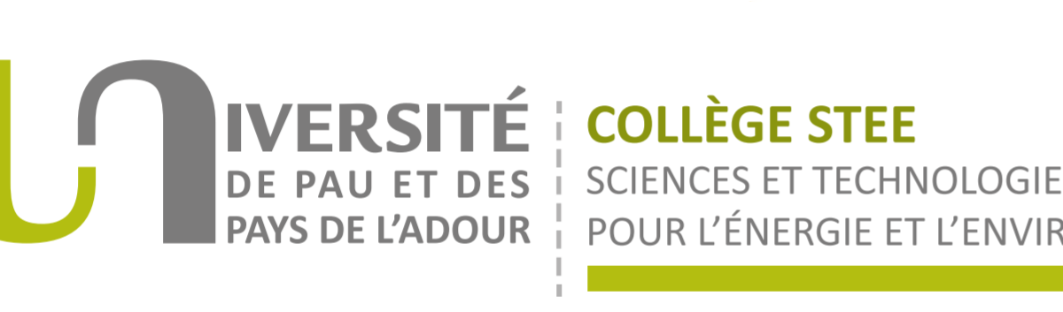 Logo UPPA-collège STEE