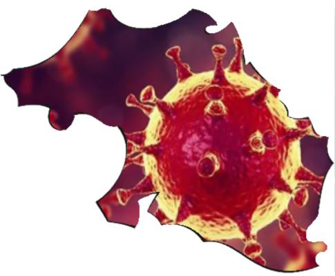 iparralde_virus